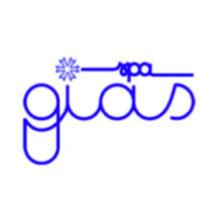 iias_logo_gias
