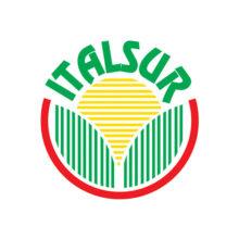 iias_logo_italsur